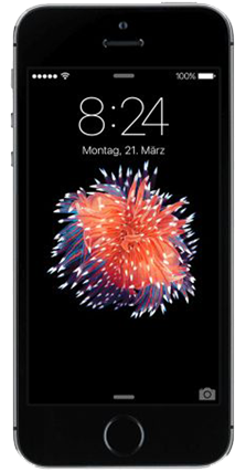 Picture of Contract Apple iPhone SE